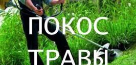 Покос травы в Азове и Азовском районе
