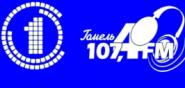 Гомельское радио